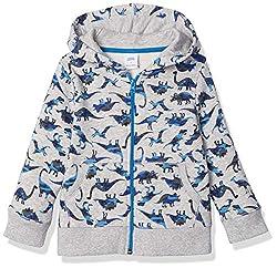 1. Amazon Essentials Boy's Dinosaur Zip-up Fleece Hoodie