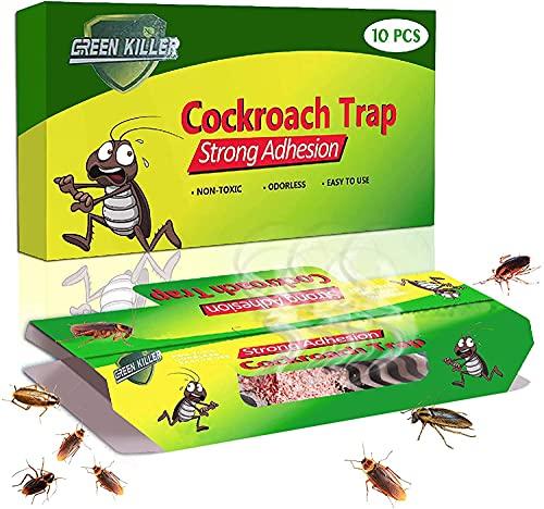 Repelente Hormigas No Toxico Marca KafooStore