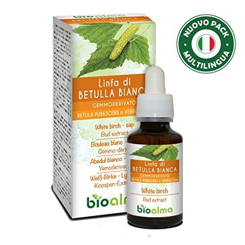 Linfa DI BETULLA BIANCA (Betula pendula, alba o verrucosa) Gemmoderivato analcoolico da linfa fresca NATURALMA | Estratto liquido gocce 60 ml | Integratore alimentare | Vegano