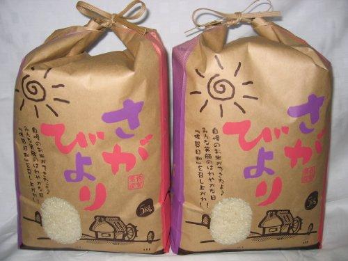 産地直送 佐賀県産 お米マイスター厳選さがびより 5kg×2 令和元年産
