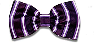 Remo Sartori - Papillon Uomo In Seta Viola A Righe, Made In Italy