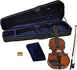 Steinbach 1/32 Geige im SET Ebenholzgarnitur