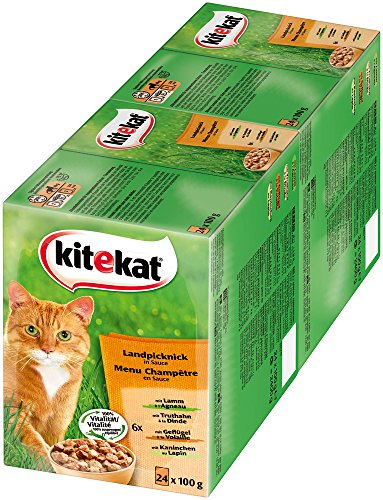 Kitekat Katzenfutter Nassfutter Landpicknick in Sauce, 48 Portionsbeutel (2 x 24 x 100g)