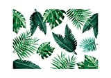 Tovagliette di carta [Confezione da 50] dimensione DIN A3 (42 x 29.7 cm) Usa e Getta. Riciclabile Monouso Antimacchia. Disegno di Piante