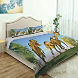SUPNON 3 Piece Queen/King Size Bedroom Decor 2 Massospondylus Running for Their Lives Quilts Cover with 2 Pillow Cover for Children Teen Boy Adult Beding Set No0006 - Queen Size
