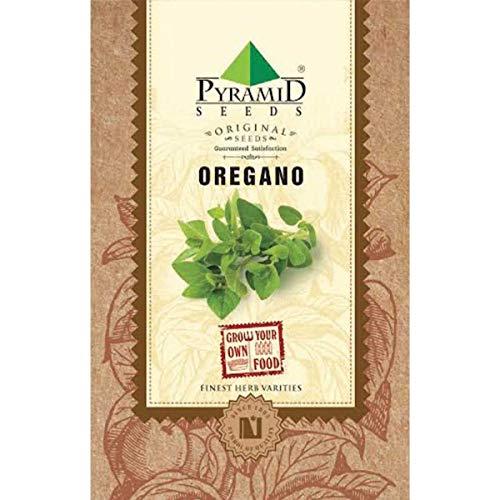 Pyramid Seeds Oregano Herb Seeds (2000 Seeds)