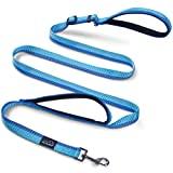 Petbaba Dog Leash For Large Dogs Review and Comparison
