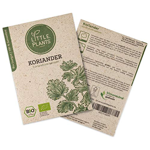 Little Plants BIO-Koriandersamen (Coriandrum sativum) | BIO-Kräutersamen | Nachhaltige Verpackung aus Graspapier | Kräuter-Samen | BIO-Saatgut für ca. 130 Koriander-Pflanzen