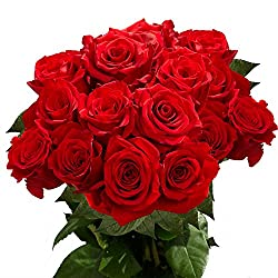 Propose your girlfriend this valentine with beautiful gifts blog girlfriend if you go on with traditional way celebrate your day with pretty red roses and make her happy by proposing her again with these red roses mightylinksfo