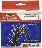 Joe's No Flats Autosigillante Presta, Camera d'aria per bicicletta Unisex Adulto, Nero, 29X1.90-2.35