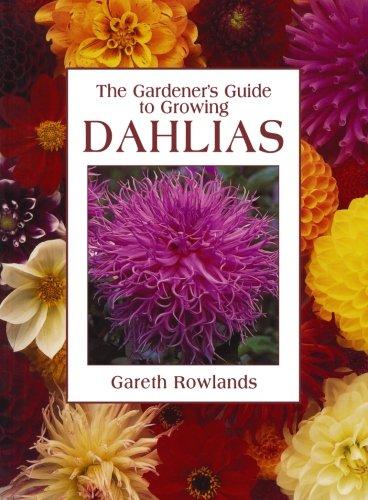 Gardener's Guide to Growing Dahlias