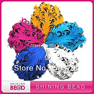 Maslin 200pcs!!! 2014 Colorful Curly Goose Feather Pads