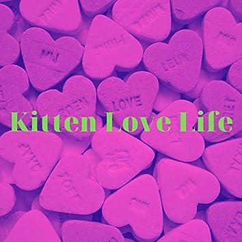 Kitten Love Life