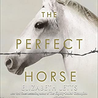 The Perfect Horse cover art