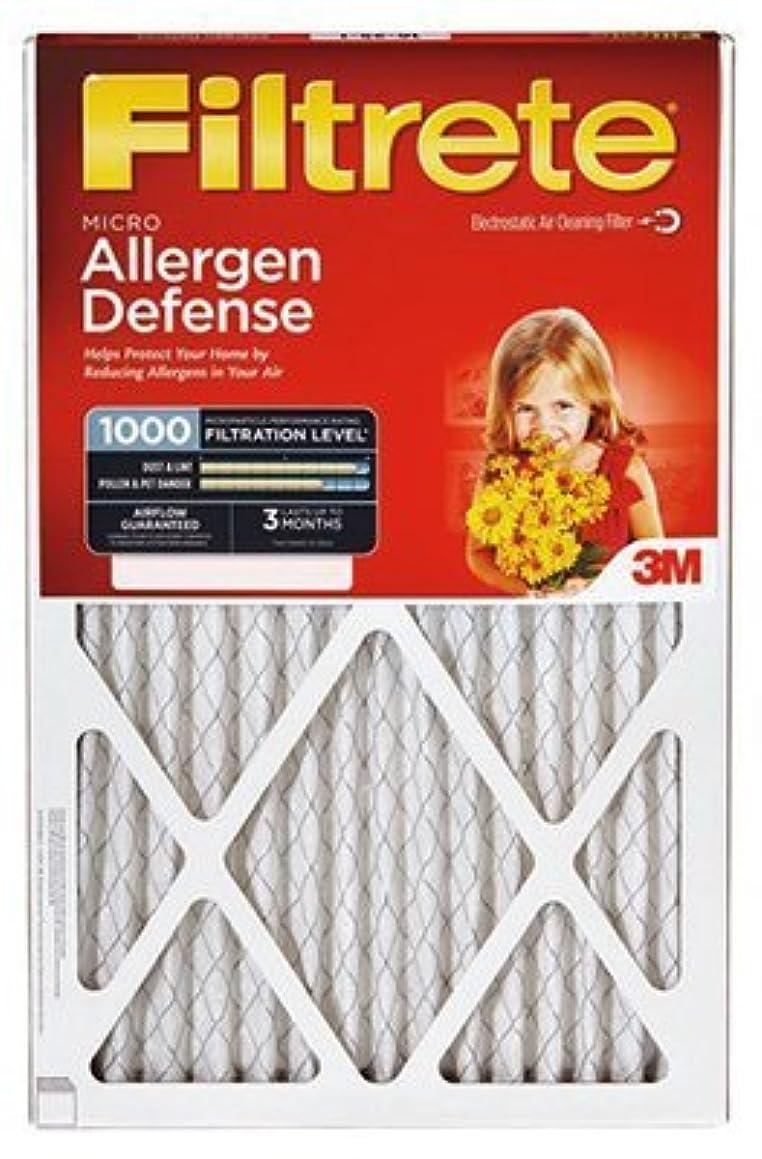 Allergen Filter 24x30x1