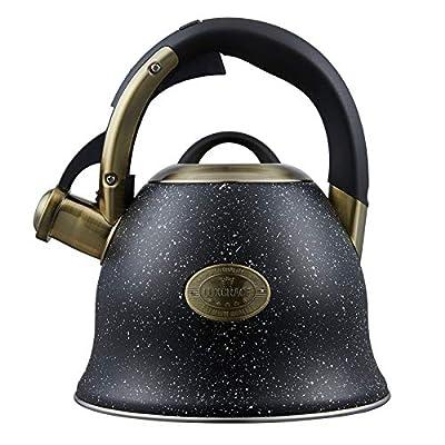 Tea Kettle -2.0 Quart Tea Kettles Stovetop Whistling Teapot Stainless Steel Tea Pots for Stove Top Whistle Tea Pot