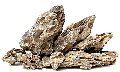 RETNE Dragon Rock Stone Drachensteine/Dragon Rock-Aquarium Terrarium Deko Steine (1Kg)