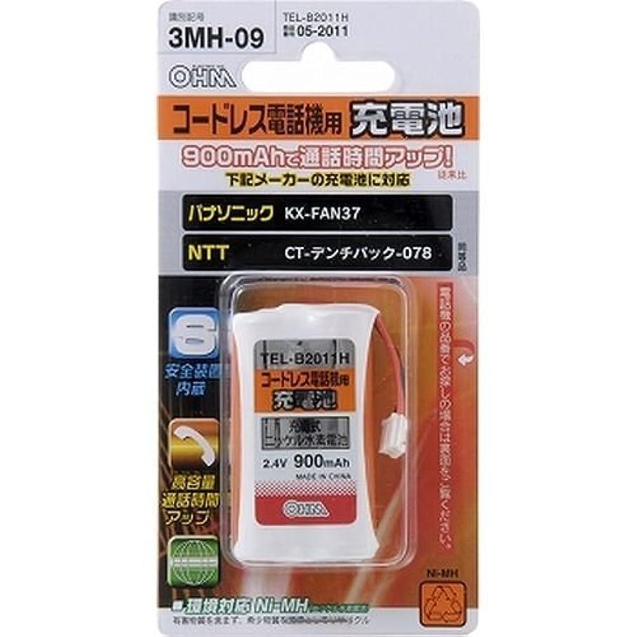 ステンレス成功した省略するコードレス電話機用充電池 TEL-B2011H