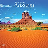 Arizona Wild & Scenic 2021 12 x 12 Inch Monthly Square Wall Calendar, USA United States of America Southwest State Nature