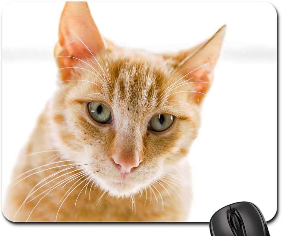 2021 Mouse Pad - Cat Pet Animal Eyes shopping
