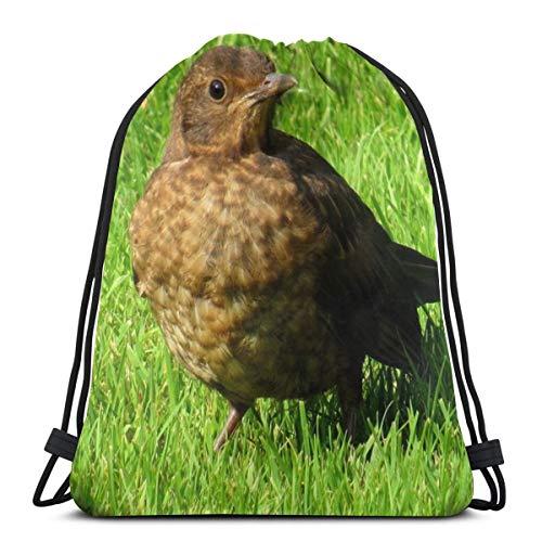 Rasyko Lindo Songbirds Hierba Campo Pájaro Personalizado Cordón Bolsas de Hombro Bolsa de Gimnasio Mochila de Viaje Ligero Gimnasio para Hombre Mujeres 42,8 x 35,56 cm