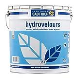Peinture Gauthier Hydrovelours Blanc 15L