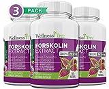 Best Forskolin Supplements - Pure Forskolin 3000mg Max Strength - Forskolin Extract Review