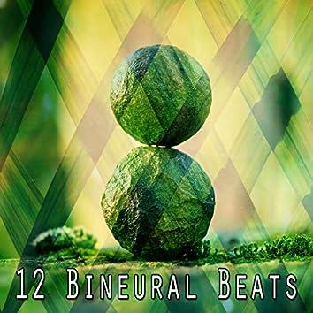 12 Bineural Beats