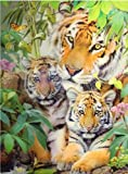 Punto De Cruz Diamante Home Wall Decoration 5D Three-Dimensional Diamond Painting Cross Stitch Hanging Painting Animal Tiger-30 * 40cm