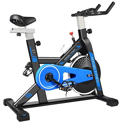 cycool Exercise Bike C1 Belt Drive Stationary Bike Indoor Cycling Bike with Ipad Stand,Comfortable Seat Cushion,LCD Monitor (S6)