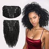 Ms TAj Afro Kinky Curly Clip en extensiones de cabello Cabello humano real 10pcs Clips en...