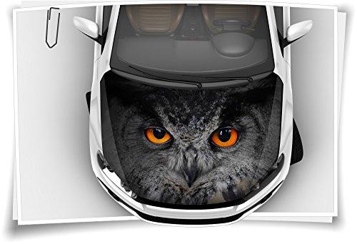 Medianlux Eule Augen Motorhaube Auto-Aufkleber Steinschlag-Schutz-Folie Airbrush Tuning Car-Wrapping Luftkanalfolie Digitaldruck