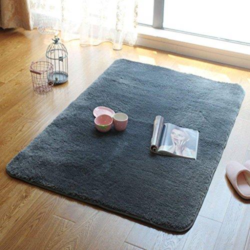 DSJ tapijt lang haar wasbaar tapijt moderne woonkamer salontafel tapijt slaapkamer Bay raam deken groot tapijt meerdere stijlen, 140 * 200CM,BBB