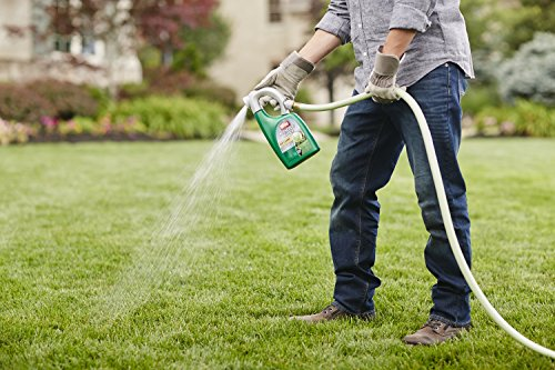 Ortho Nutsedge Dandelion Killer for Lawns