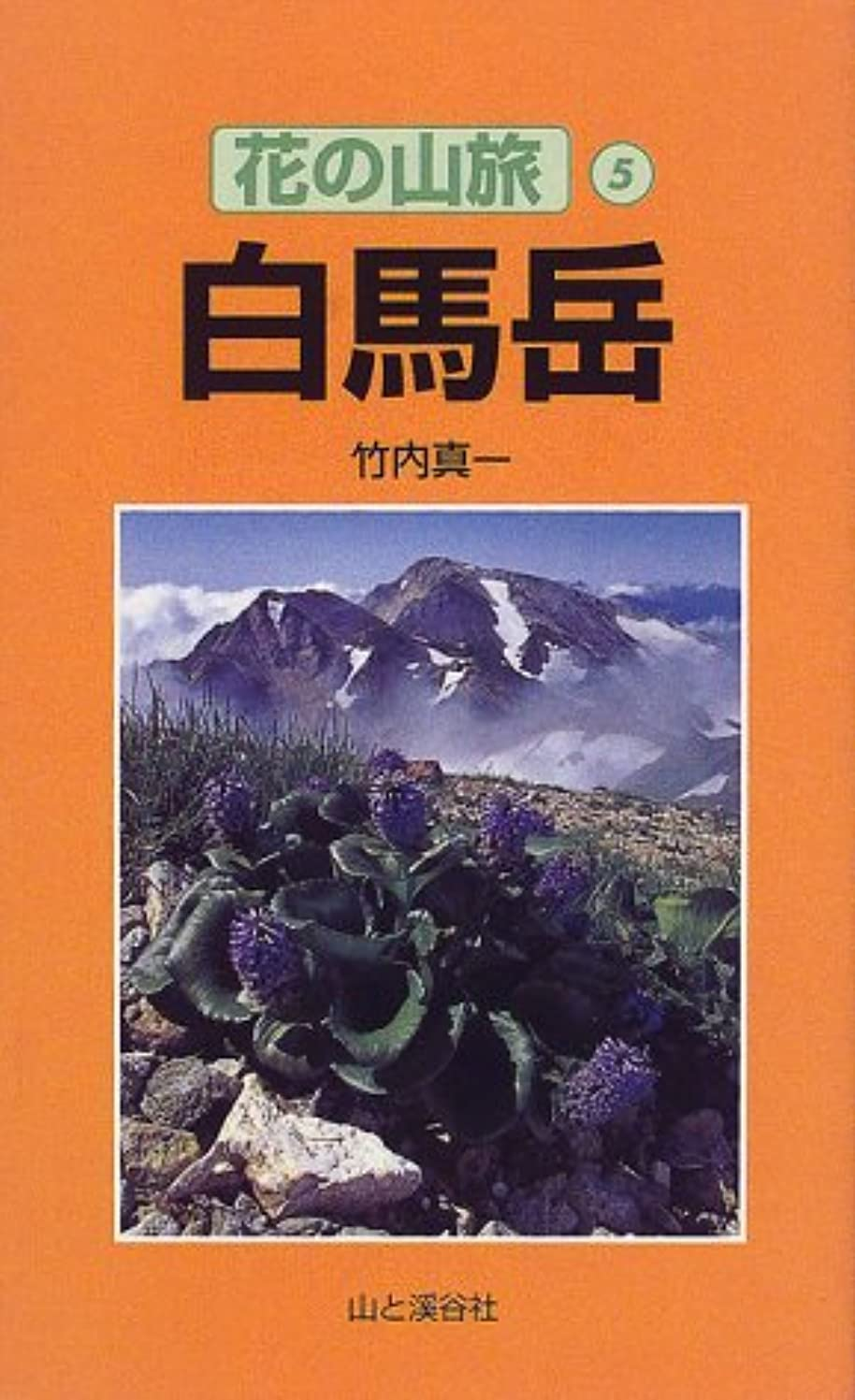 中世の夢時々白馬岳 (花の山旅)
