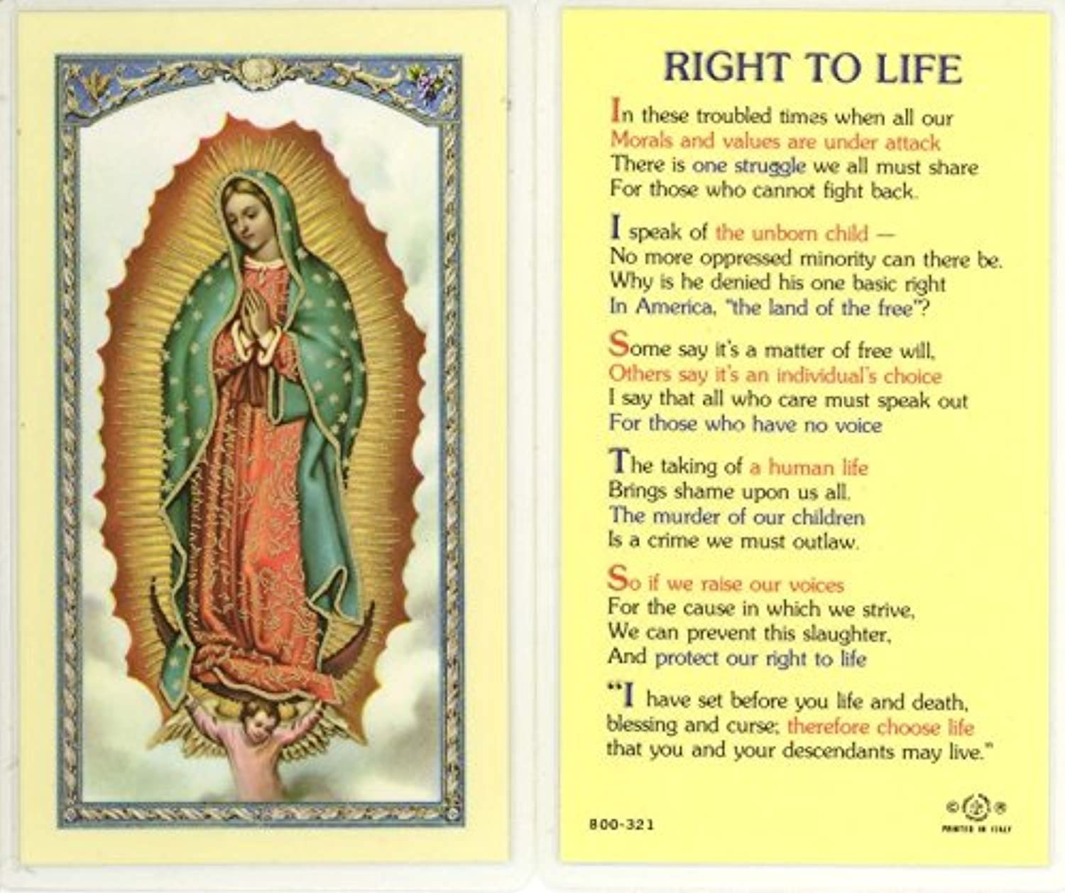 StealStreet SSWJHE24706 Right to Life, Clear Holy Cards