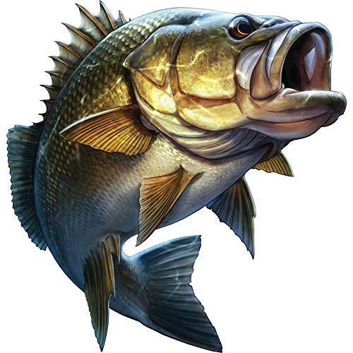 Pesca Carro de Dibujos Animados Estilismo Boca Grande Bajo Pescado Pegatina Etiqueta engomada de Coche Kayak Calcomanías Pegatinas de la Ventana de la computadora portátil, 20cm * 20cm