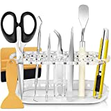 HIRALIY Vinyl Weeding Tool Kit with Weeding Tools Stand Organizer,Craft Vinyl Tool Accessories for Cricut Maker/Explore Air 2/Silhouette/Cameos/Lettering/Oracal 631 651 751
