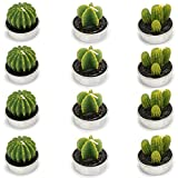 Ogrmar 12 PCS Cactus Candles Decorative Tea Light Candles for Home Party Birthday Wedding Decoration 3 Styles (Green)