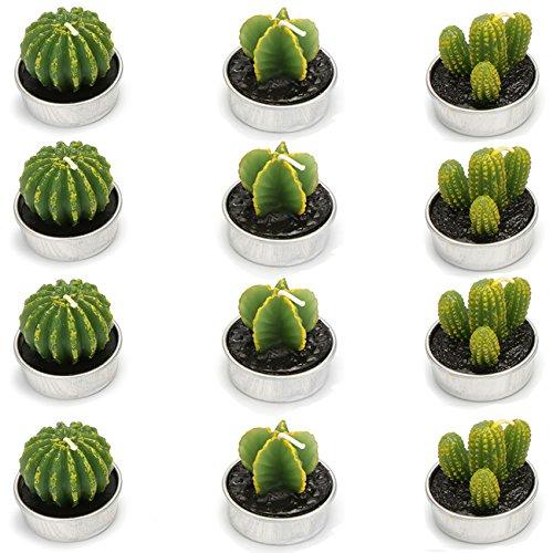 Ogrmar Kaktus Kerzen dekorative Teelichter für Home-Party, Geburtstag, Hochzeit Dekoration 3 Styles 12er-Pack Grün