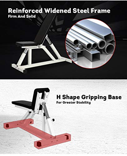 Seg Adjustable Weight Bench Fitness Flat Incline Decline Essential Utility Exercise Home Gym Equipment
