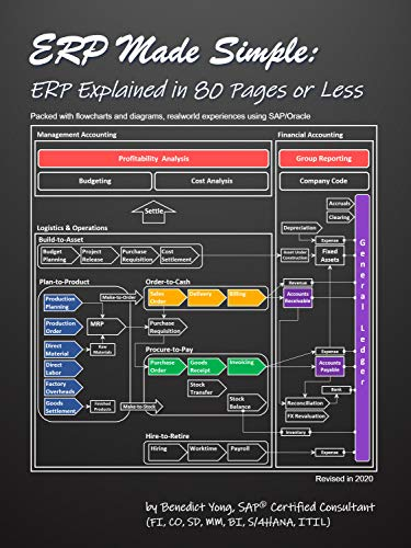 ERP Made Simple: ERP Explained in 80 Pages or Less (English Edition)