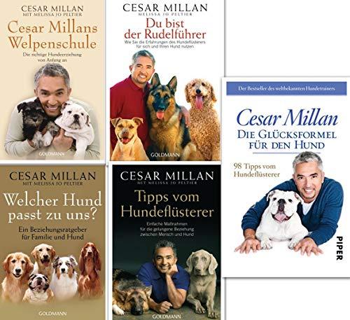 Cesar Millan Hundeflüsterer Reihe