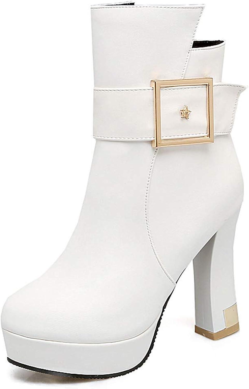 Women Boots Platform High Heel Ankle Boots Ladies Chunky Heel Buckle Fall & Winter Warm Boots