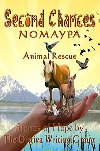 SECOND CHANCES: Nomaypa Animal Charity: Stories of Hope (English Edition)