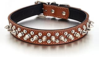 Rachel Pet Products Rivet Spiked Studded Genuine Leather Dog Collar for Small or Medium Pet