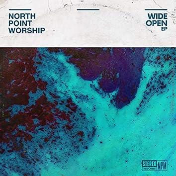 Wide Open (feat. Clay Finnesand)