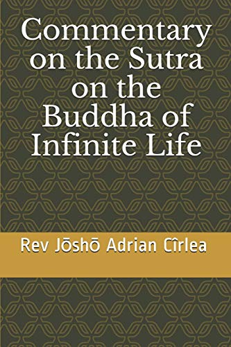Commentary on the Sutra on the Buddha of Infinite Life