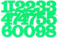 (シャシャン)XIAXIN 防水 PVC製 数字 ナンバー ステッカー セット 耐候 耐水 ローマ字 数字 キャラクター 表札 スーツケース ネームプレート ロッカー 屋内外 兼用 TS-520 (グリーン, 1点)