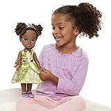 Disney Princess Dolls & Accessories